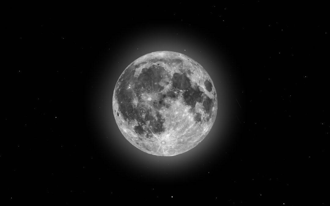 Leven op het ritme van de maan